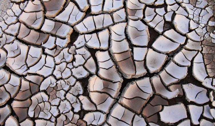Dry Soil by Petr Kratochvil
