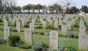 The very green grass at the Gaza War Cemetery